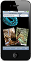 Jenolan Caves Apps