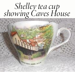 Shelley tea cup showing Caves House