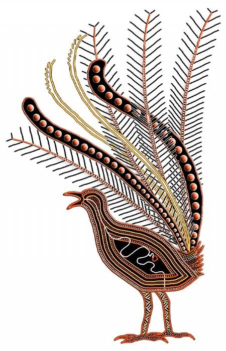 Aboriginal Culture | Birds & Animals | Jenolan Caves