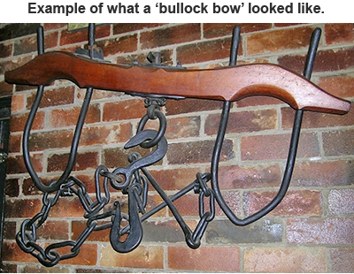 example of what a bullock bow looked like
